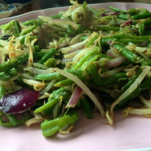 Today's quick supper: Green beans, bean sprouts, red onion, garlic, olive oil, lemon. All dry fried stir fry!